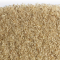 SylliFlor<sup>®</sup> Psyllium Husks<br />Calcium<br />Single pack 250 g